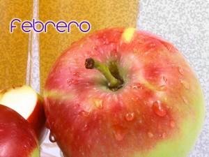 frutas y verduras febrero